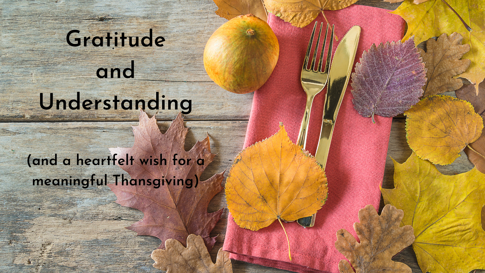 Gratitude and Understanding
